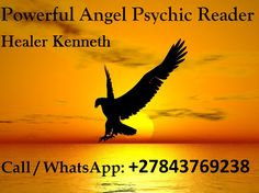 An eagle in flight silhouette. Love Spell That Work, Do What You Like, Medium Readings, Love Psychic, Brahma Kumaris, Psalm 145, Best Psychics, Psychic Mediums, George Orwell
