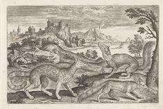 Marters, eekhoorns en een vos, Adriaen Collaert, 1595 - 1599