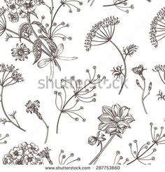 Seamless vintage pattern with herbs, flowers and plants. Herbal background.