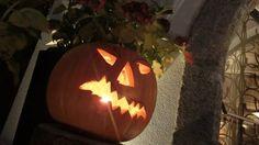 Herbstzeit ist Kürbiszeit im Schulerhof in Plaus bei Naturns