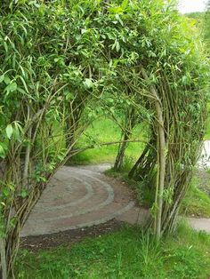 This is what a living willow hut looks like when leafed out. I would suggest a tunnel version for a school though - with windows so you can supervise. Eco Garden, Summer Garden, Dream Garden, Garden Art, Garden Design, Living Willow, Natural Fence, Backyard Playground, Garden In The Woods