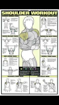 Shoulder training – About Health Bodybuilding Training, Shoulder Workout Bodybuilding, Bodybuilding Workouts, Tricep Workout Gym, Gym Workout Tips, Workout Challenge, Sholders Workout, Weight Lifting Workouts, Workout Posters