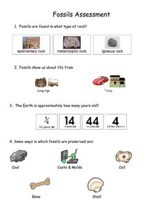 13th 14th and 15th amendments vaap stuff 15th amendment 14 amendment special education. Black Bedroom Furniture Sets. Home Design Ideas