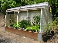 An excellent step by step on building a raised bed with cover. Use plastic for winter (and extending seasons) or shade cloth/netting for spring and summer use...Build a raised bed cloche in 8 steps | Living the Country Life