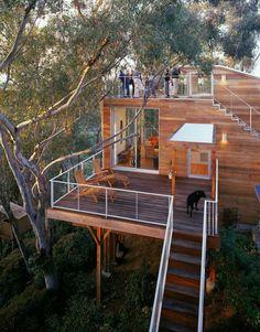 Tree House, San Diego CA - Safdie Rabines Architects