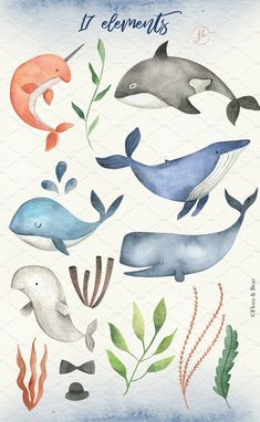 Whales Watercolor Clipart - Kinder - New Watercolor Watercolor Clipart, Watercolor Whale, Watercolor Animals, Watercolor Paintings, Watercolor Artists, Oil Paintings, Whale Illustration, Watercolor Illustration, Animal Drawings
