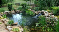 idée-étang-jardin-bassin-aquatique-fabriquer-soi-même