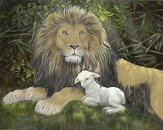 lion+and+lamb+images | Lion And Lamb Perfect Peace Painting