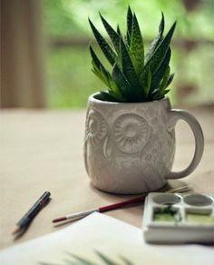 """5 formas diferentes de montar un """"minijardín"""" en tu piso o apartamento   Cuidar de tus plantas es facilisimo.com"""