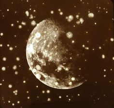 The Moon, Warren de la Rue, photoheliograph