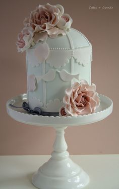 Beautiful bird cage cake