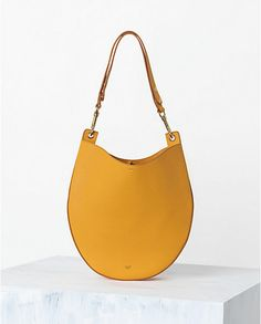 CÉLINE   Spring 2014 Leather goods and Handbags collection