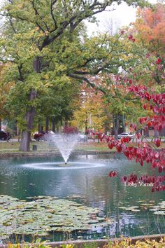 Fall in Central Park, Ashland, KY