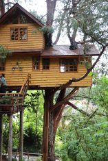 Casa na árvore na Serra da Mantiqueira. Parque Amantikir. Viagem à Campos do Jordão com crianças, Hotel Toriba, Dezembro.