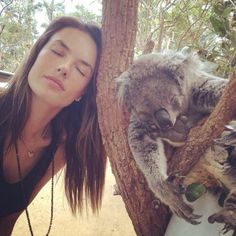 Nap time in Australia  #Alessandra Ambrosio, Oct. 2nd, 2014