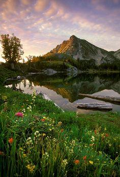 Wallows Mountains, Oregon. Color of mountains vs sky