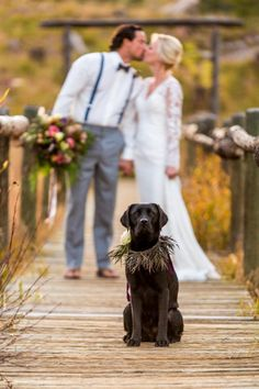 Dog: Black Lab | Rustic Vail Wedding Inspiration Piney River Ranch Aldabella Photography | Via http://MountainsideBride.com
