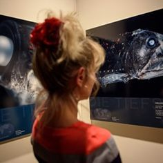 Opening of exhibition 'Oceans - An Expedition in Unexplored Depths' in Berlin