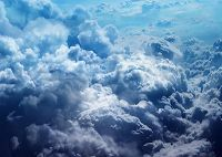 Cloud-Based vs. On-Premise Software – Which Side of the Fence Are You On?