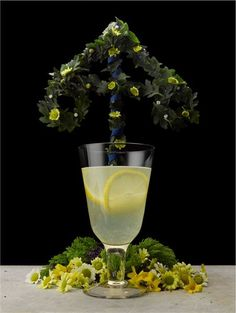 #Midsummer cocktail - click for recipe! #vodka #drink