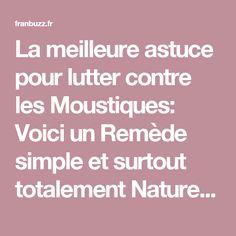 La meilleure astuce pour lutter contre les Moustiques: Voici un Remède simple et surtout totalement Naturel ! – Franbuzz.fr