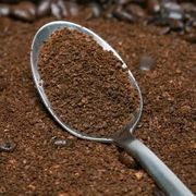 How to Use Coffee Grinds in Vegetable Gardens | eHow
