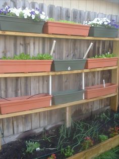 this vertical bed is made from scrap lumber and planter boxes that can be transfered to the green house in the winter for lettuce all year long.