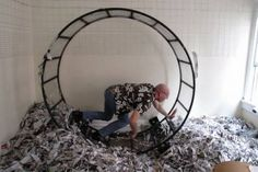 Free to a Good Home: Human-Sized Hamster Wheel