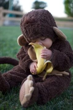 monkey eating a banana, so cute!