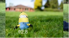 The background in an image is affected by how narrow or wide is the depth of field. You can change the DOF by changing the aperture. See through sample images how much the DOF changes and how the background is affected from f/2 up to f/22.