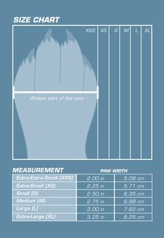How To Measure Your Dog For Shoes Booties Hiking Dogs Travel
