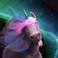 Единорог/unicorn