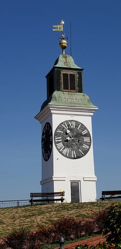 Clocktower, Novi Sad, Serbia – Best Travel images in 2019 Novi Sad, In 2019, Travel Images, Big Ben, Travel Destinations, Travel Photography, Pictures, Daisy, Backpack