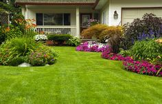 Learn how to avoid common mistakes when planting grass seed for a more full, lush, vibrant lawn. Home Landscaping, Front Yard Landscaping, Landscaping Company, Courtyard Landscaping, Florida Landscaping, Landscaping Images, Landscaping Blocks, Inexpensive Landscaping, Residential Landscaping