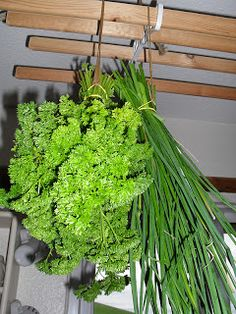 Living a slow and simple life: Drying my herbs
