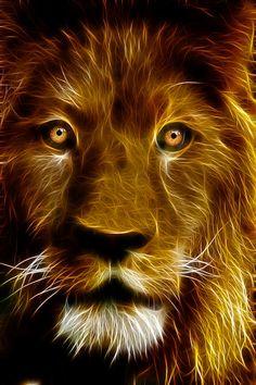 Lion Portrait Canvas Print / Canvas Art by Tilly Williams