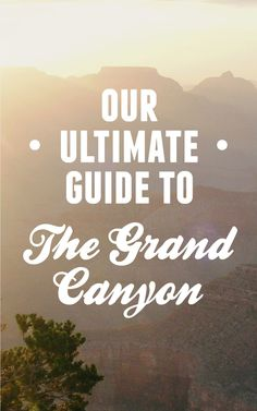 Our ultimate guide to The Grand Canyon / Intrepid Travel