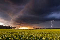 Evening Storm over Ashey, Isle of Wight, England (Commended in Classic View category).  Picture: Jamie Russell / Landscape Photographer of the Year Awards 2012