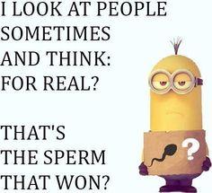 Bahahahahahahaha!!