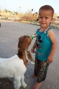 My lamb is snatching my nipple Animals For Kids, Baby Animals, Funny Animals, Cute Animals, Cabras Boer, Cute Kids, Cute Babies, Baby Goats, All Gods Creatures