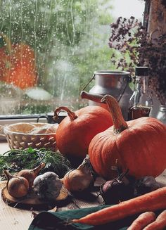 beautiful hipster indie Halloween rain fall autumn American nature gif rain gif pumpkin fall gif through-the-thorns-to-the-stars Winter Gif, Autumn Cozy, Autumn Rain, Autumn Feeling, Autumn Aesthetic, Samhain, Fall Harvest, Harvest Season, Autumn Inspiration