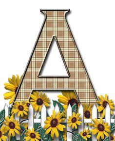sunflower alphabet |