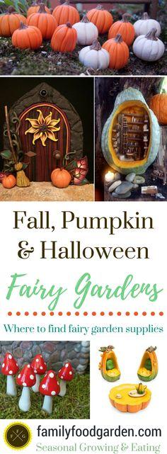 Fall Halloween Pumpkin Fairy Gardens ~ Ideas & Supplies