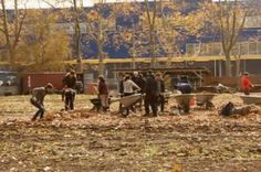 NYC urban farms face a climate reality check article.