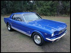 My first car I owned only in gold. 1965 Ford Mustang