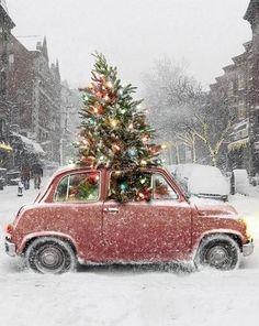 An odd Christmas sight lights vintage winter tree cool car street weird snow christmas