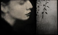 If you would call me/ by Antonio Palmerini