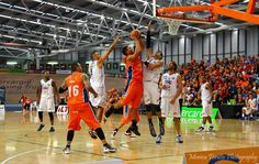 home game - Southland Sharks v Wellington Saints at Stadium Southland. See our website for the story. Basketball Teams, Basketball Court, Team S, Sharks, Ranger, Saints, Game, Website, Shark