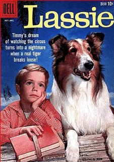 A cover gallery for the comic book Lassie Vintage Book Covers, Vintage Comic Books, Vintage Tv, Comic Book Covers, Vintage Comics, Western Film, Western Movies, Jon Provost, Retro