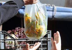 Φρούτα και λαχανικά μοιράζουν παραγωγοί στα διόδια των Αφιδνών